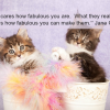 Thumbnail image for I'm Fabulous? YOU'RE Fabulous!